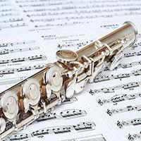کلاس های آموزشگاه موسیقی فلوت